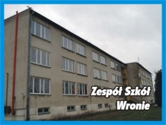 Zesp� Szk� we Wroniu